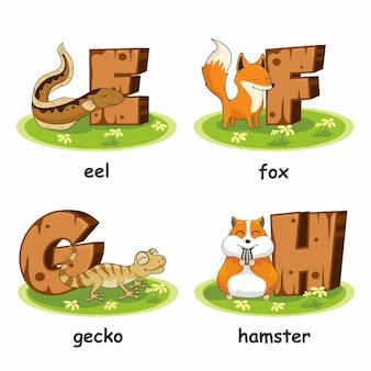 Drewniany alfabet zwierząt węgorz lis chomik gekon
