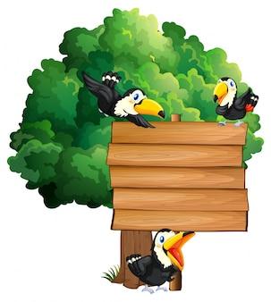 Drewniany znak z trzema ptakami tukany