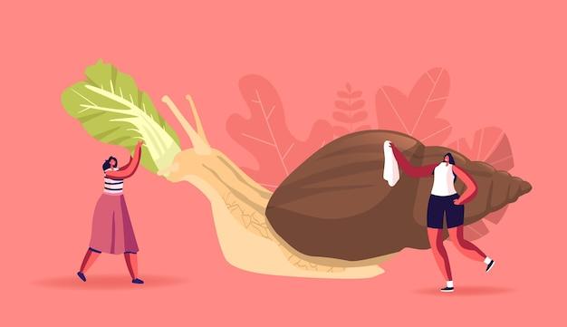Drobne kobiece postacie pielęgnacja ogromnych ślimaków achatina karmionych liśćmi kapusty pekińskiej i czyszczącą muszelką. ludzie i mięczak pet, zoologia, koncepcja przypraw dzikich zwierząt. ilustracja kreskówka wektor