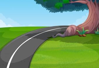 Droga w zielonym parku