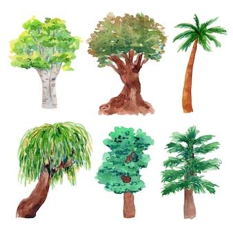 Drzewa akwarelowe
