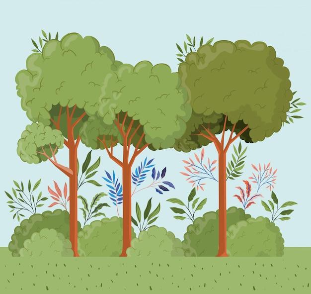 Drzewa i liście z krzaka krajobrazu sceną