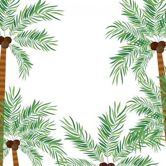 Drzewko palmowe z koksem w białym tle