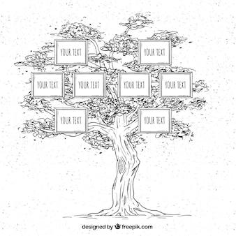 Drzewo genealogiczne ręcznie rysowane w stylu vintage