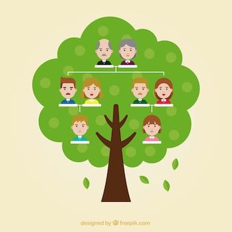Drzewo genealogiczne w płaskiej konstrukcji