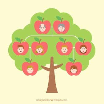 Drzewo genealogiczne z jabłkami