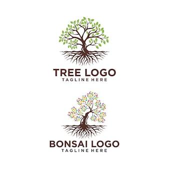 Drzewo logo projekt sylwetka wektor