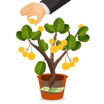 Drzewo pieniędzy ze złotymi monetami. aktywa użyteczne lub wartościowe rosnące w garnku z banknotu dolarowego. ręce zbierają pieniądze z drzewa. koncepcja biznesowa depozytów finansowych. realistyczna ilustracja