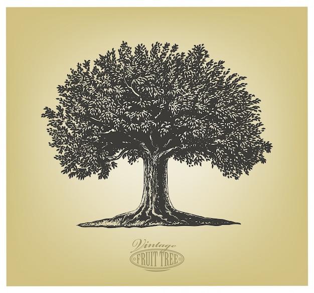 Drzewo w stylu grawerowania