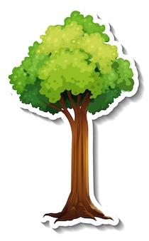 Drzewo z naklejką z zielonymi liśćmi na białym tle