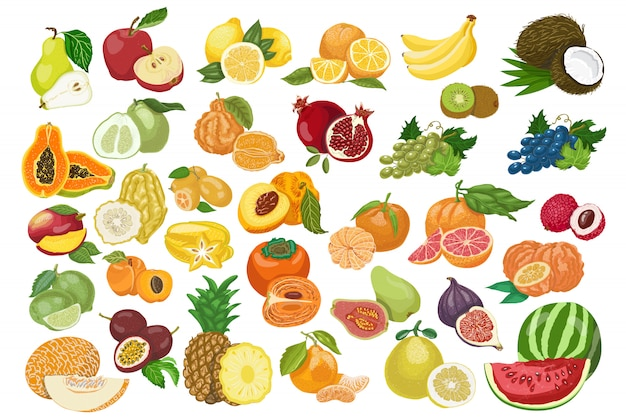Duża kolekcja izolowanych owoców
