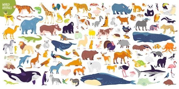 Duży wektor zestaw różnych światowych dzikich zwierząt, ssaków, ryb, gadów i ptaków rzadkie zwierzęta