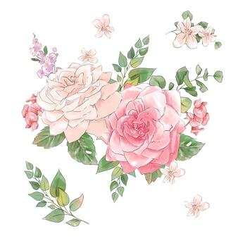 Duży zestaw akwareli delikatnych róż