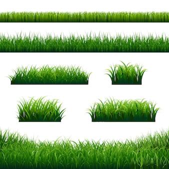 Duży zestaw granic zielonej trawy