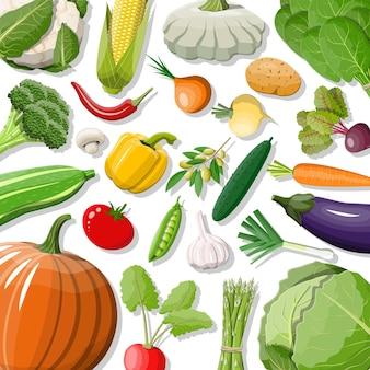 Duży zestaw ikon warzyw na białym tle. cebula, bakłażan, kapusta, papryka, dynia, ogórek, marchewka pomidorowa i inne warzywa. zdrowa żywność ekologiczna. żywienie wegetariańskie. ilustracja wektorowa w stylu płaski