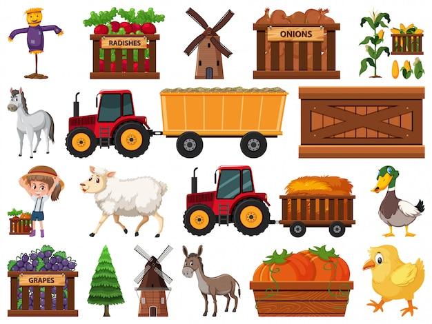 Duży zestaw izolowanych obiektów gospodarstwa
