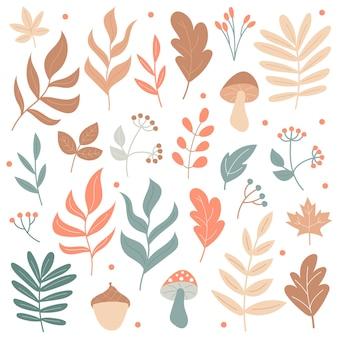 Duży zestaw jesiennych elementów - grzyby i rośliny - na białym tle