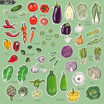 Duży zestaw kolorowych etykiet warzyw