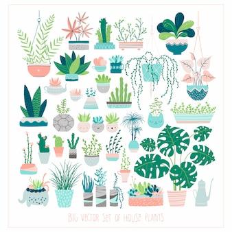 Duży zestaw roślin domowych w doniczkach. ilustracje w swobodnym stylu rysowane ręcznie.