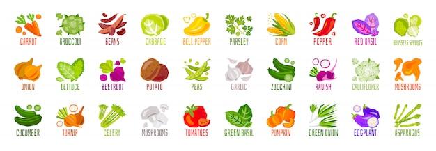Duży zestaw warzyw orzechy zioła przyprawy przyprawy ikony na białym tle