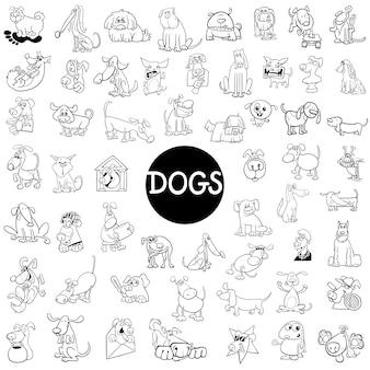Duży zestaw znaków dla psa