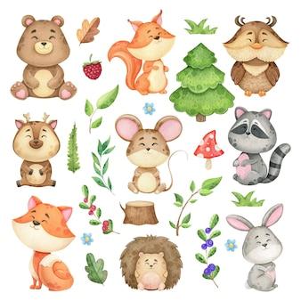 Duży zestaw zwierząt leśnych i elementów leśnych, kolekcja akwarela dzikich zwierząt, dzieci
