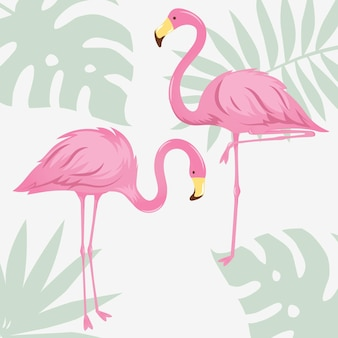 Dwa flamingi ilustracji wektorowych do projektowania