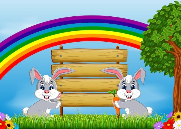 Dwa króliki z pustym znakiem