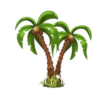 Dwa piękne palmy