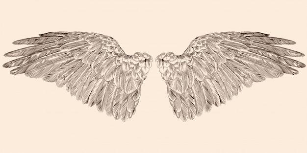Dwa rozpostarte skrzydła anioła wykonane z piór na białym tle na beżowym tle.