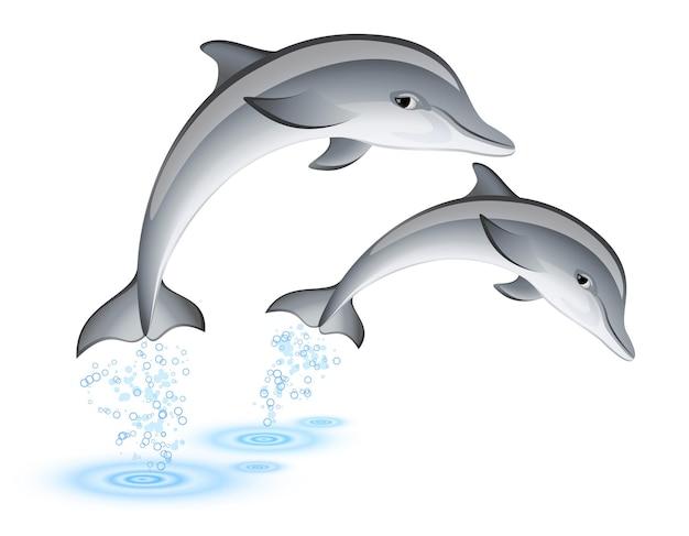 Dwa skaczące delfiny