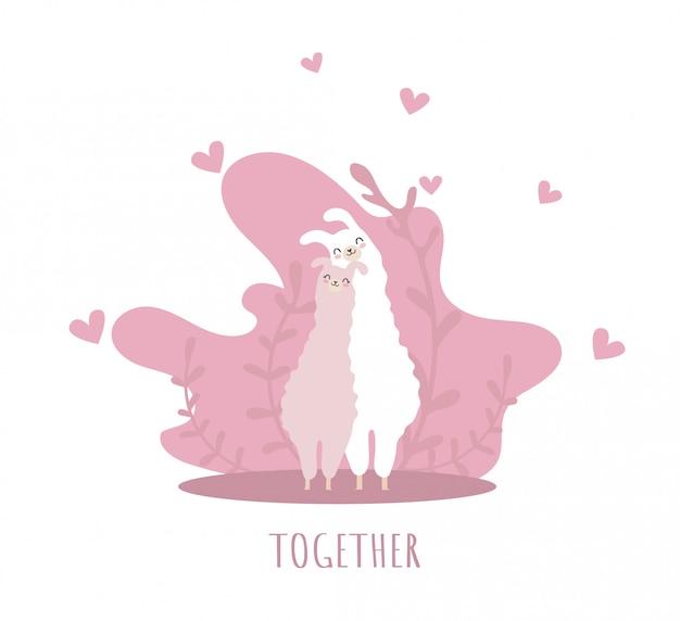 Dwie lamy zakochane w uśmiechu i wielu szczegółach. razem. słodka alpaka.