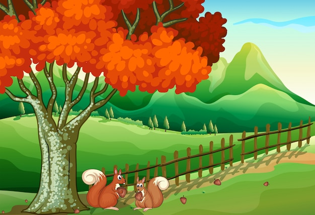 Dwie Wiewiórki Pod Wielkim Drzewem Premium Wektorów