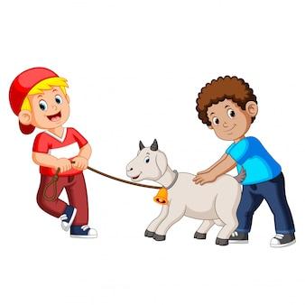Dwoje dzieci bawiących się z kozą