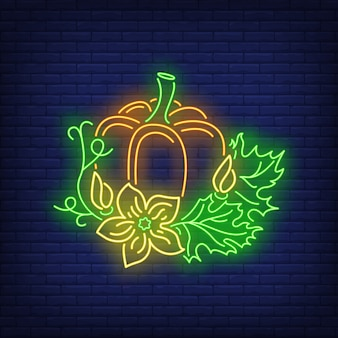 Dynia z liści neon znak