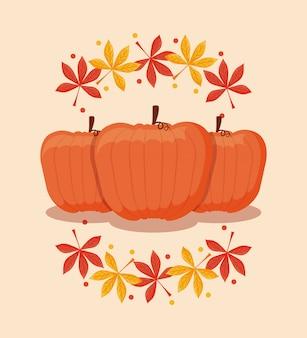 Dynie żywności na święto dziękczynienia z liści klonu