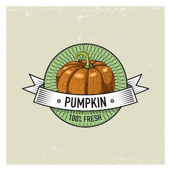 Dyniowy vintage zestaw etykiet, emblematów lub logo do wegetariańskiego jedzenia, warzyw rysowane ręcznie lub grawerowane. amerykański styl retro farmy.
