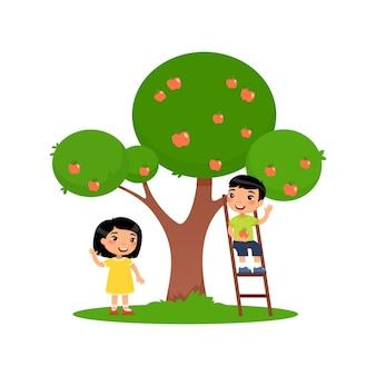 Dzieci zbierają jabłka śliczny azjatycki chłopiec siedzi na schodach