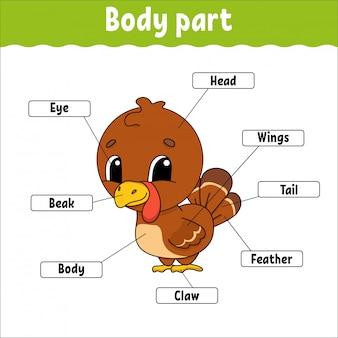 Dziecinne zajęcia części ciała
