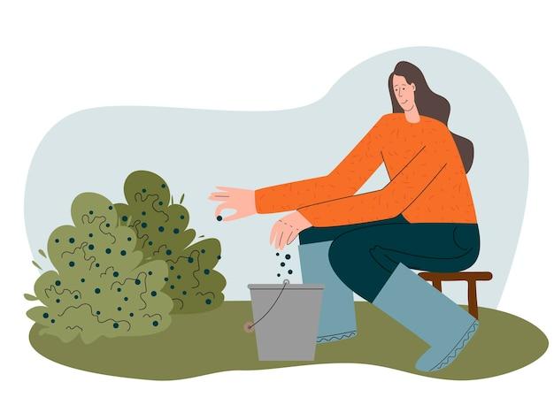 Dziewczyna zbiera jagody na farmie jesienne żniwa jedzą lokalną żywność ekologiczną płaskie wektor koncepcja ekologiczna...