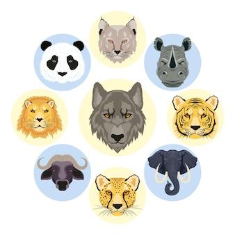 Dziewięć dzikich zwierząt głów postaci zwierząt