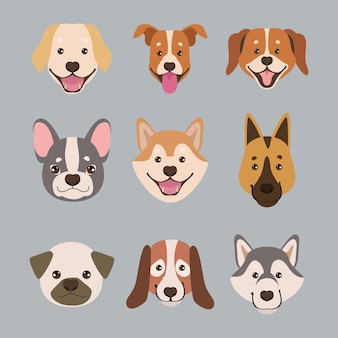 Dziewięć maskotek głowy psów