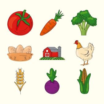 Dziewięć świeżych produktów z zestawu rolniczego