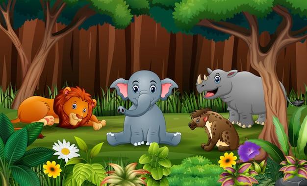 Dziki animlas bawiące się w parku