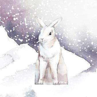 Dziki biały królik w winter wonderland