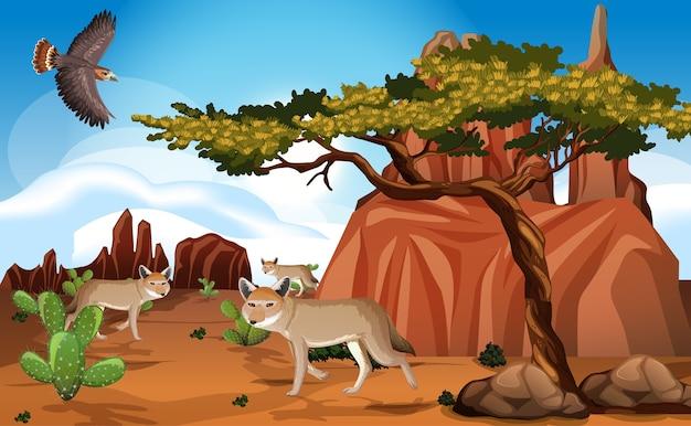Dziki krajobraz pustyni na scenie dziennej