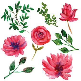 Dziki różowy kwiat z liśćmi akwarela zestaw do dekoracji