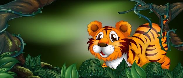 Dziki tygrys w lesie