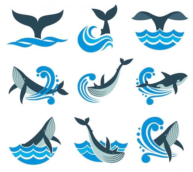 Dziki wieloryb w falach morza i wody rozprysków wektorowe ikony