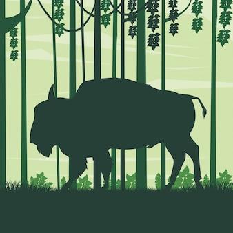 Dzikie zwierzę bawole w krajobrazie pola